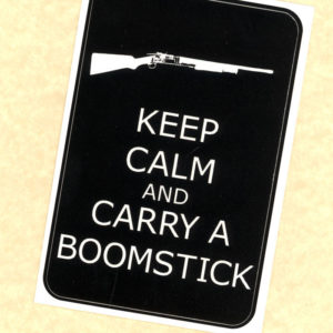 Carry a Boomstick Sticker by Wilde Designs